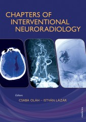 Chapters of Interventional Neuroradiology